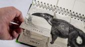 Primer Animalario de la Biodiversidad Colombiana